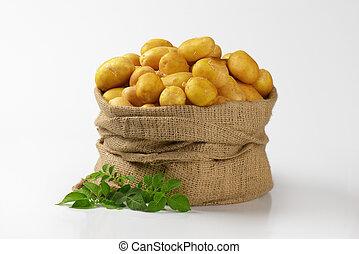 sack of potatoes - burlap sack of fresh potatoes on white...