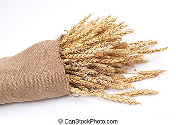 Sack of wheat ears