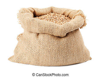 sack of wheat grains bag isolated on white background