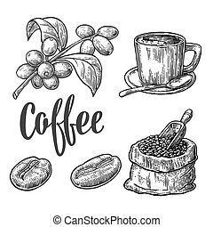 Sack with coffee beans with wooden scoop and beans, cup, branch with leaf and berry. Hand drawn sketch style. Vintage vector engraving illustration for label, web.  Isolated on white background