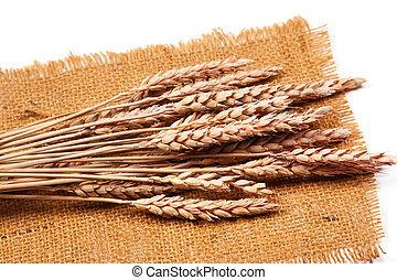 Sackcloth and wheat