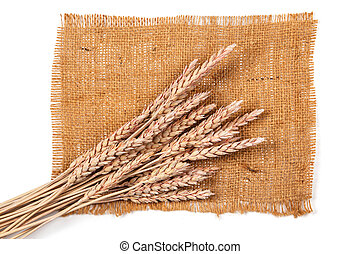 Sackcloth and wheat