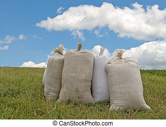 sacks with wheat