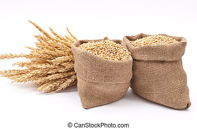 sacos, de, trigo, grãos