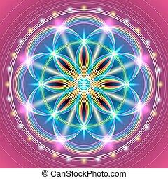 sacré, fleur, géométrie