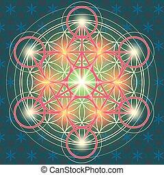 sacré, fleur, iv, géométrie