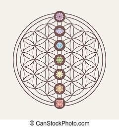 sacré, géométrie, conception, chakra, icônes
