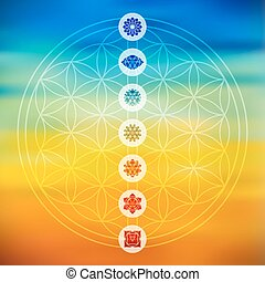 Sacred geometry with chakra icons colorful background