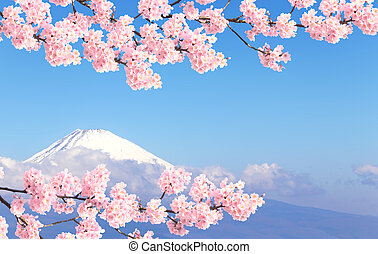 Beautiful sacred Mount Fuji (Fujiyama) in clouds and branch of the blossoming sakura with white flowers, Japan. On blue sky background. View from Mount Komagatake