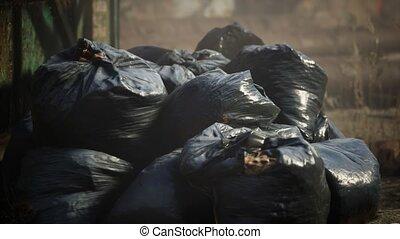 sacs, bâtiment, plastique, dehors, déchets ménagers, frein, ...