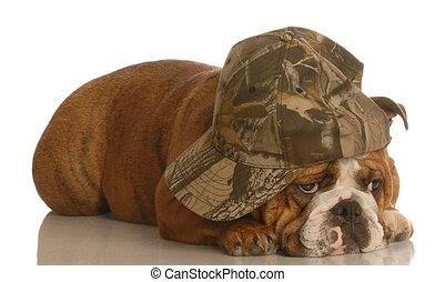 english bulldog with sad bored expression wearing cute hat