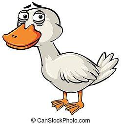 Sad duck on white background