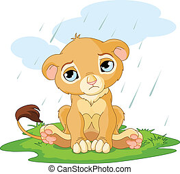 Sad lion cub - A cute character of sad lion cub on rainy day