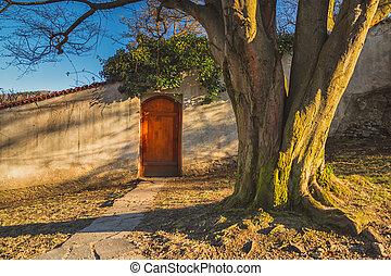 sad, -, zátiší, dveře, dávný, popředí, hloupý walkway, val, kámen, kufr, strom