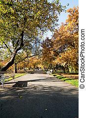 sady, vojanovy, 公園