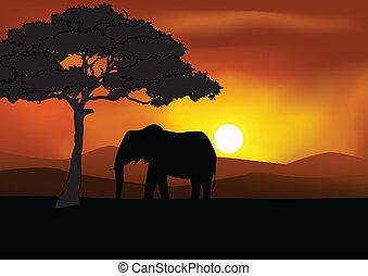 safari, achtergrond, silhouette