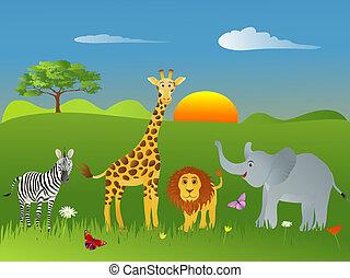 Safari Animals - Childrens illustration of safari animals on...