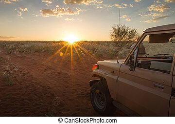 Safari at the sunset, Namibia