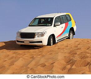 safari, auto, reise, wüste