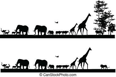 safari, dier, silhouette