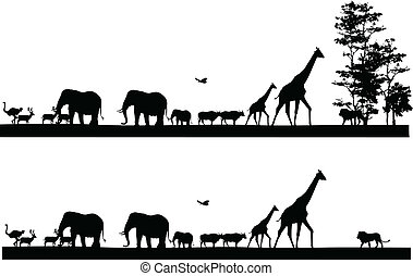 safari, dyr, silhuet