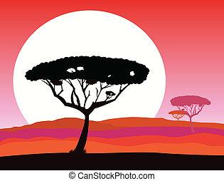 safari, fond, africaine
