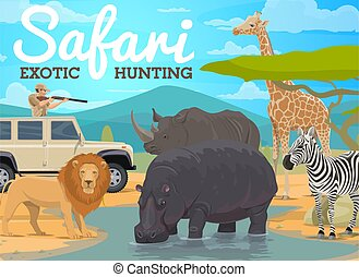 Safari hunting and African animals hunt in jungle, vector ...