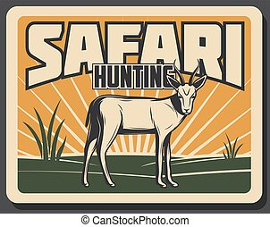 Safari hunting retro banner with african animal - Safari...