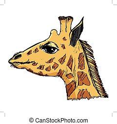 safari, jardim zoológico, ilustração, áfrica, animal, girafa, fauna