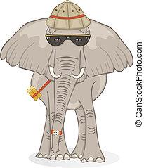 safari, słoń