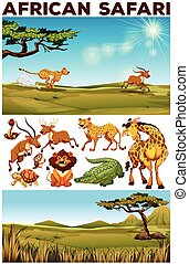 Safari theme with wild animals in the field