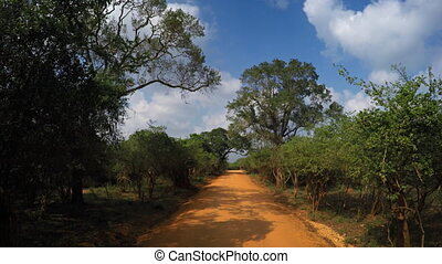 Safari Tour on Dirt Road through National Park in Sri Lanka, with Sound