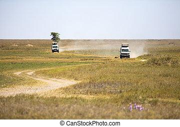 Safari tourists on game drive in Serengeti