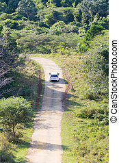 Safari with car on dirt road from Isimangaliso Wetland Park,...