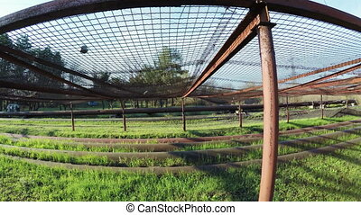 Safety net under power lines - Under LEP protective netting...