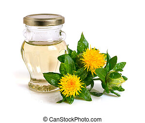 Safflower plant with oil in the bottle. Isolated on white ...
