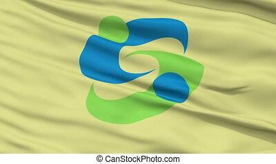 Saga Capital City Close Up Flag - Saga Capital City Flag,...