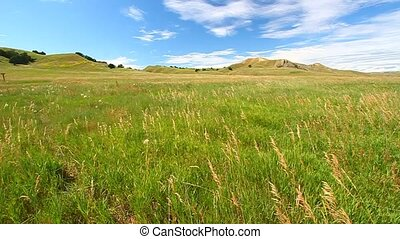 Sage Creek Grassland - Badlands - Grassland scenery at Sage...
