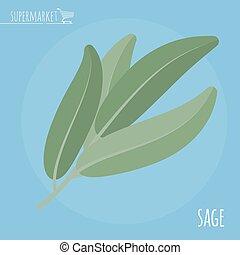 Sage flat design vector icon.