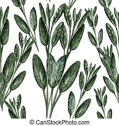 Sage - Hand Painted Watercolour - Culinary herbs - hand...