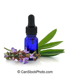 Sage Herb Therapy - Sage herb flowers and leaves with an ...