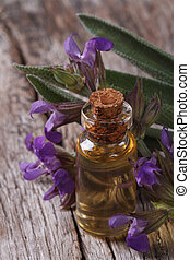 Sage oil in a glass bottle closeup vertical