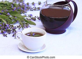 Sage tea - Cup of herbal tea from lat. Salvia officinalis