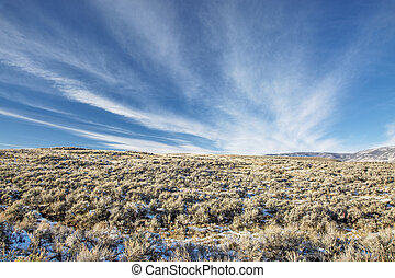 sagebrush at foothills of Medicine Bow Mountains, North Park near Walden, Colorado, late fall scenery