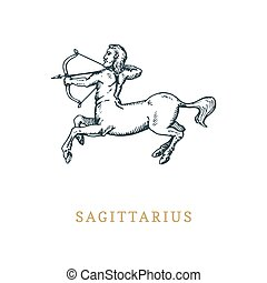 Sagittarius zodiac symbol,hand drawn in engraving style. Vector graphic retro illustration of astrological sign Centaur.