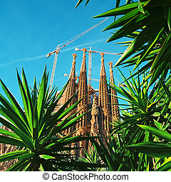 sagrada familia, barcelona, -, espanha
