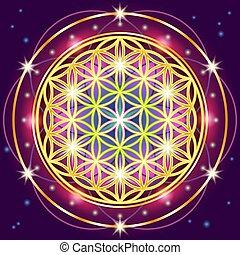 sagrado, geometría