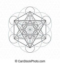 sagrado, geometria, metatron, semente, vida, esboço
