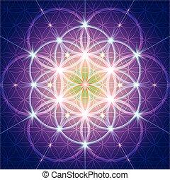 sagrado, símbolo, geometría