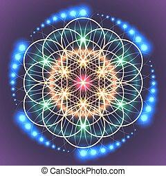 sagrado, vida, geometría, flor